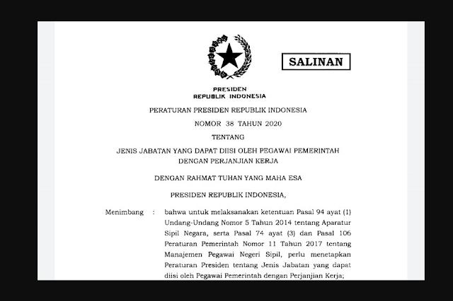 Kriteria Jabatan untuk PPPK Menurut Perpres Nomor 38 Tahun 2020