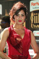 Videesha in Spicy Floor Length Red Sleeveless Gown at IIFA Utsavam Awards 2017  Day 2  Exclusive 22.JPG