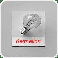 Revise com segurança sua tese ou dissertação: Keimelion
