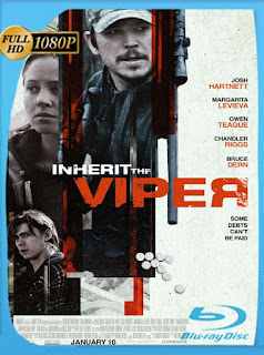 Inherit the Viper (2019) HD [1080p] Latino [GoogleDrive] SilvestreHD