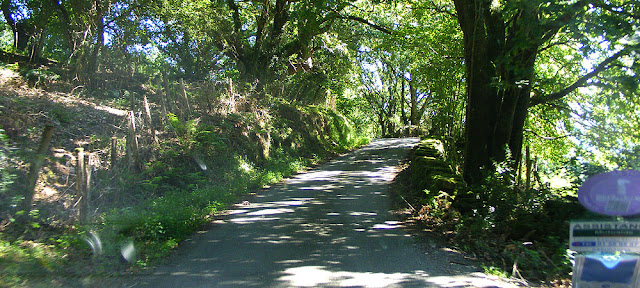 Descending a narrow road in Navarre, Spain.  Indre et Loire, France. Photographed by Susan Walter. Tour the Loire Valley with a classic car and a private guide.
