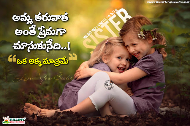 Sister Quotes That Will Make You Hug Your Sister Tight,What is a sister quote,How can I make my sister happy,What is a good sister,How can I make my sister happy when she is sad,Deep And Heart Touching Sister Friendship Quotes,famous quotes about sisters,heart touching sister quotes,meaningful sister quotes,short sister quotes,funny sister quotes,little sister quotes,big sister quotes,famous quotes about sisters,quote about sisters,sister bond quotes and sayings