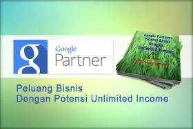 Panduan Google Partner