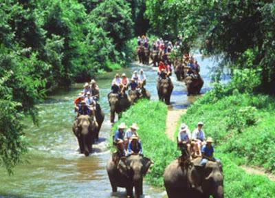 Bermain dengan Gajah di Elephant Safari Park Desa Taro, Tegallalang, Bali