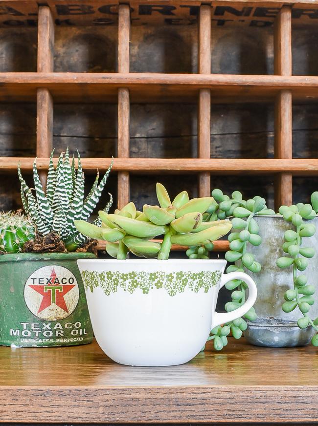 vintage teacup planter