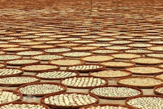 peluang usaha umkm home industri produsen krupuk mentah kering