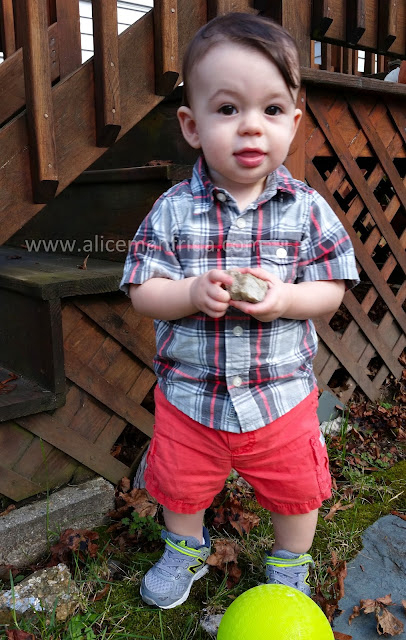 toddler, plaid, rocks, playing outside, motherhood, parenting, the day without naps