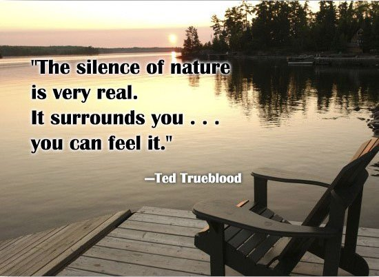 The silence of nature