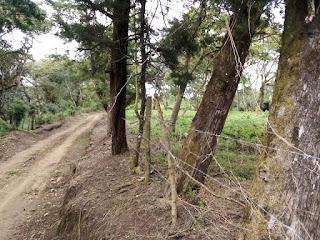 Terreno para desarrollo