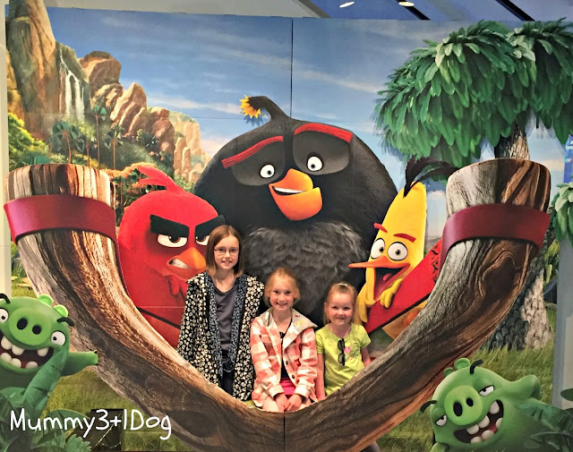 Angry birds display and the girls