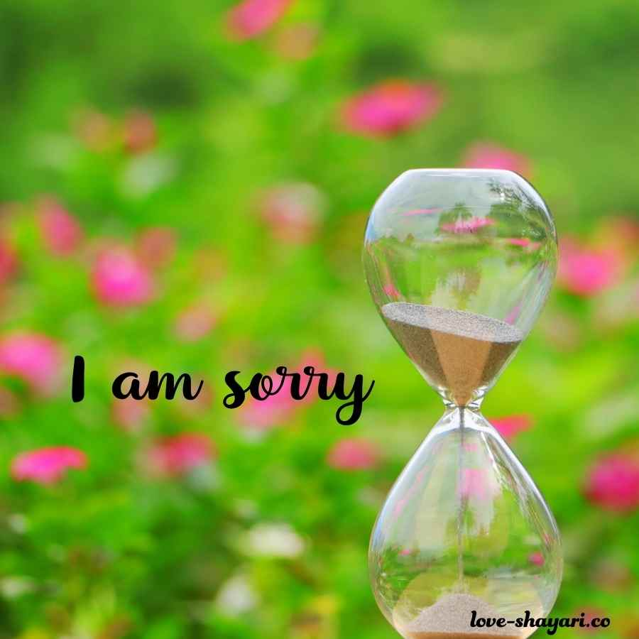 i am sorry my love images