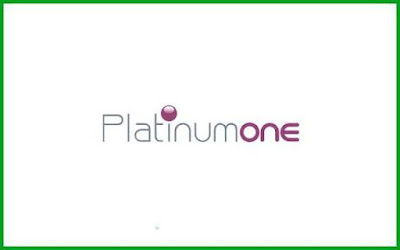 Platinumone Business Services