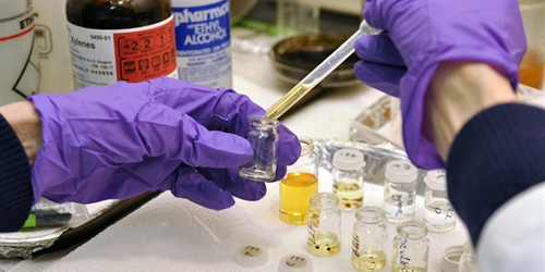 synthetic urine use increased in 2015