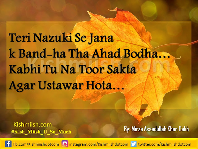 Urdu Poetry, Shayari, Urdu Poetry Images, Hindi Shayari, Love Shayari, Urdu Shayari, Love Poetry, Sad Urdu Poetry, Romantic Poetry, Mirza Galib, Best Urdu Poetry, Love Urdu Poetry