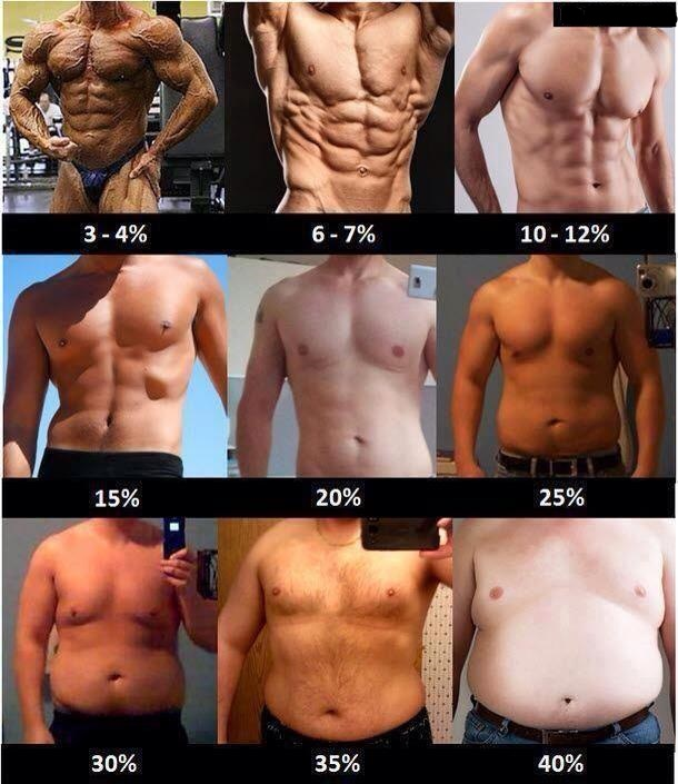 body fat percentage do abs show