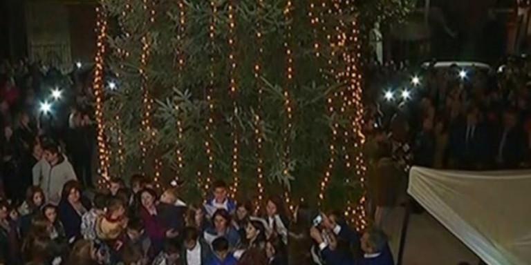 Φωταγωγήθηκε το πρώτο Χριστουγεννιάτικο δέντρο στην Ελλάδα για φέτος στον Ταξιάρχη!