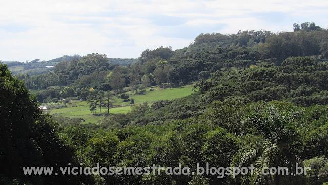 Paisagem vista da Casa na Árvore, Bento Gonçalves, RS