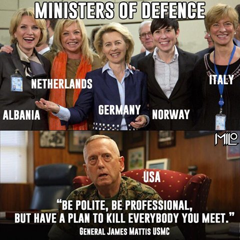 Image result for eu defense ministers female
