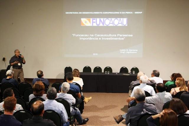 Funcacau financia e desenvolve a cacauicultura no Pará no estado
