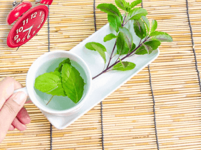Basil Tea Pimple Cure