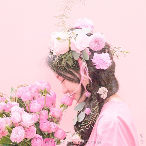 SILVERBELL – 벚,꽃 – Single