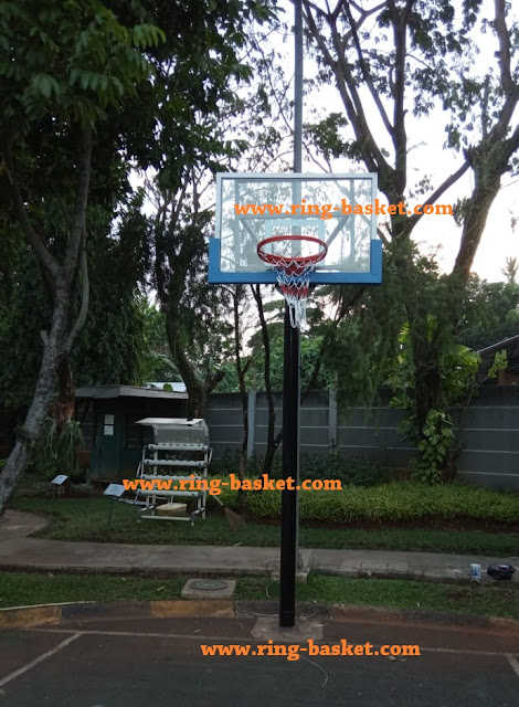 ring basket tanam
