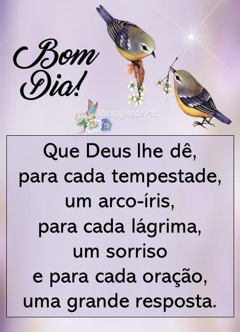 Que Deus lhe dê,   para cada tempestade,   um arco-íris,   para cada lágrima,   um sorriso   e para cada oração,   uma grande resposta.  Bom Dia!
