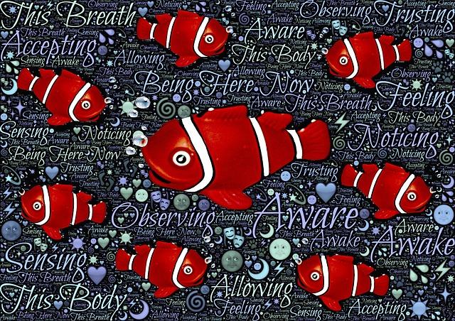 How Do Fish Breathe