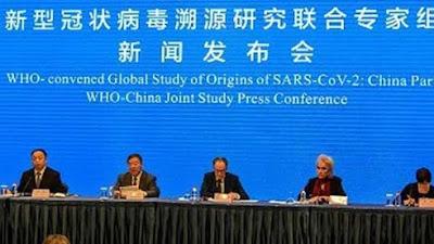 Tim Ahli WHO Temukan Informasi Baru Soal Penyelidikan Asal-usul Covid-19 di Wuhan