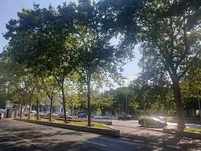 Paseo del Prado una tarde de verano en Madrid
