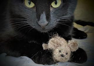 Игрушка мышка для кошки своими руками