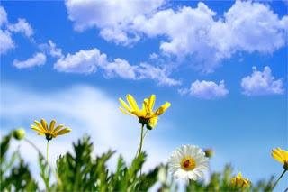 حالة الطقس ... توقعات هيئة الأرصاد الجوية ... لستة أيام قادمة ... من يوم الأحد إلى يوم الجمعة