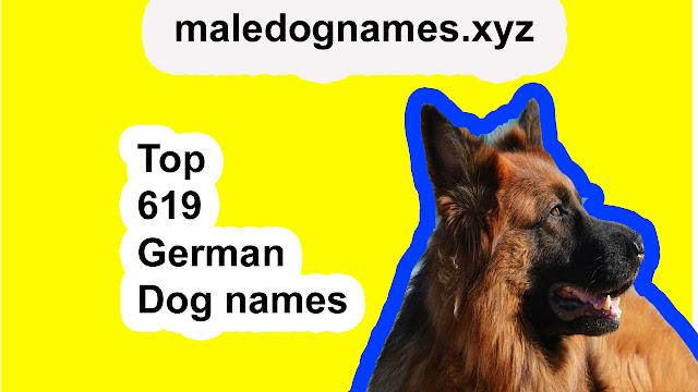 German dog names 2019