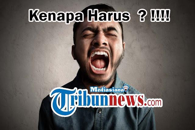 Tribunnews.com Anak Kesayangan Google