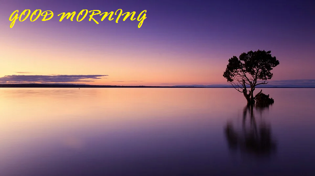 Good Morning Scenery Images free hd