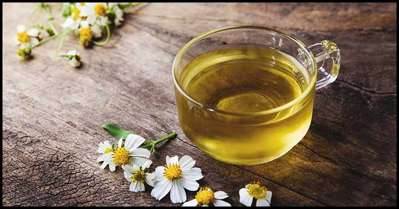Chamomile For Menstrual Pain And Other Health Problems