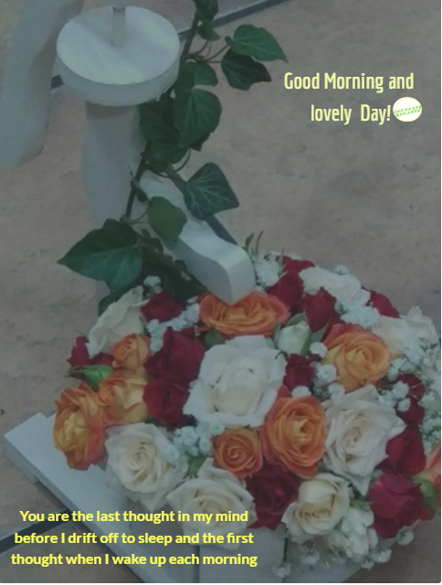 Best 20 +Good morning flowers for Good morning wishes for lover with love quotes that makes feel awesome and sweet    good morning my love good morning love quotes morning love quotes good morning love message morning wishes for her good morning message to my love good morning love you morning quotes for her cute good morning morning wishes for love good morning i love you good morning message to make her fall in love good morning dear love good morning love quotes for her lovely morning morning sweetheart sweet morning text  ,good morning flowers,good morning wishes for lover,good morning love quotes  good morning images with flowers, good morning images with flowers hd, good morning beautiful flowers, good morning romantic rose,