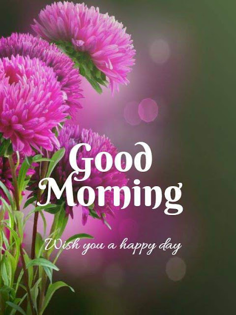 Good Morning flower Wishes Images
