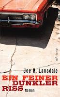 Ein feiner dunkler Riss - Joe R. Lansdale