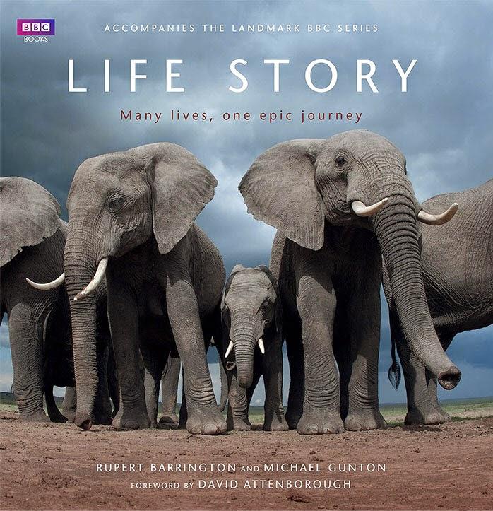 Fshare] - BBC Life Story (2014) BluRay REMUX 1080p AVC DTS-HD MA5 1