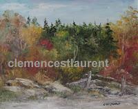 Vieux lot au bord de la forêt en automne, huile 8 x 10 par Clémence St-Laurent