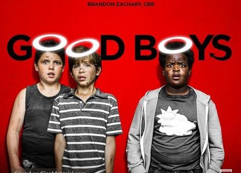 Download Good Boys (2019) Dual Audio [Hindi+English] 720p + 1080p Bluray ESubs