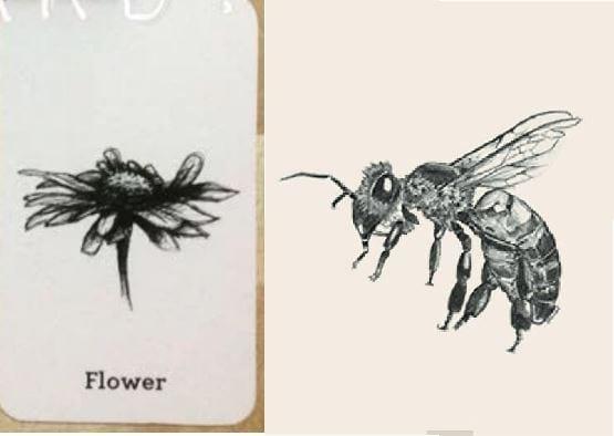 Bộ sưu tập download tải ảnh animal 4D cards free mới nhất