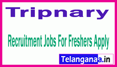 Tripnary Recruitment Jobs For Freshers Apply