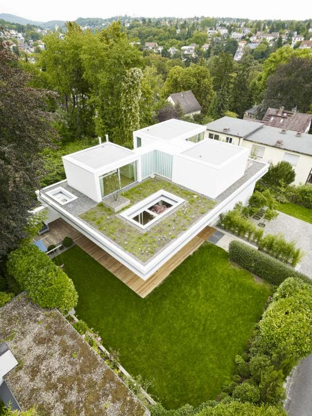 Modern House with Grass Roof - House S