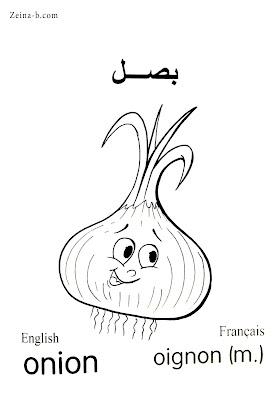 رسومات للتلوين خضروات بصل - Onion - Oignon