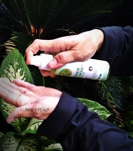Renner Handmoist Hand Sanitizer