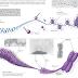 Regulasi Ekspresi Gen Pada Eukariotik