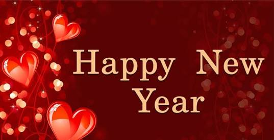 Image result for how to say happy new year in hindi