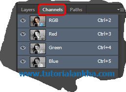Penjelasan Mengenai Palet dan Fungsinya pada Photoshop